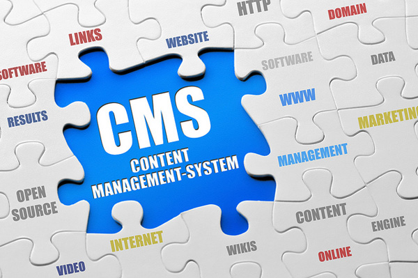 Fitting the pieces of the CMS puzzle together